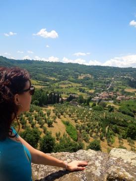 Overlooking Orvieto