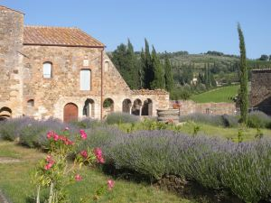 Gardens at Sant'Antimo