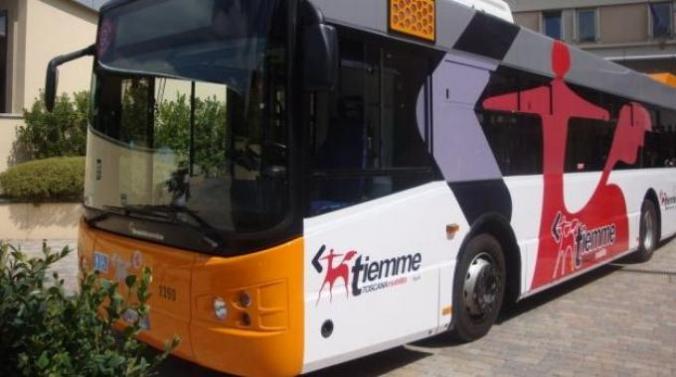 1689781-bus-urbano-2010_1